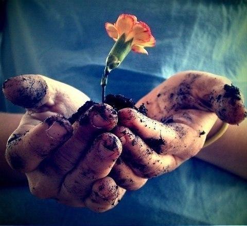 """Один маленький мальчик, когда его спросили, что такое прощение, дал чудесный ответ: """"Это аромат, который дарит цветок, когда его топчут..."""""""